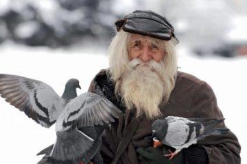 Стихотворение автора мудрость старика