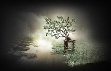 Вірші Олександра Харіна Чиста вода