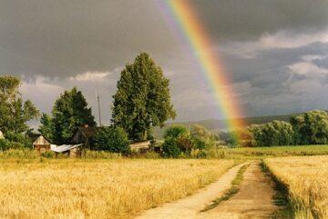 Украина Родина стихи Харина Александра