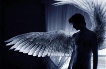 авторские стихи Ангел и Человек